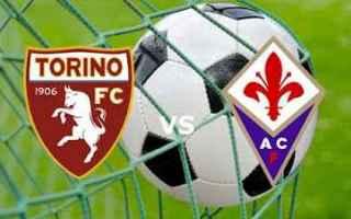 Coppa Italia: torino fiorentina video gol calcio