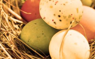 Alimentazione: uova  sicurezza alimentare  etichettatur