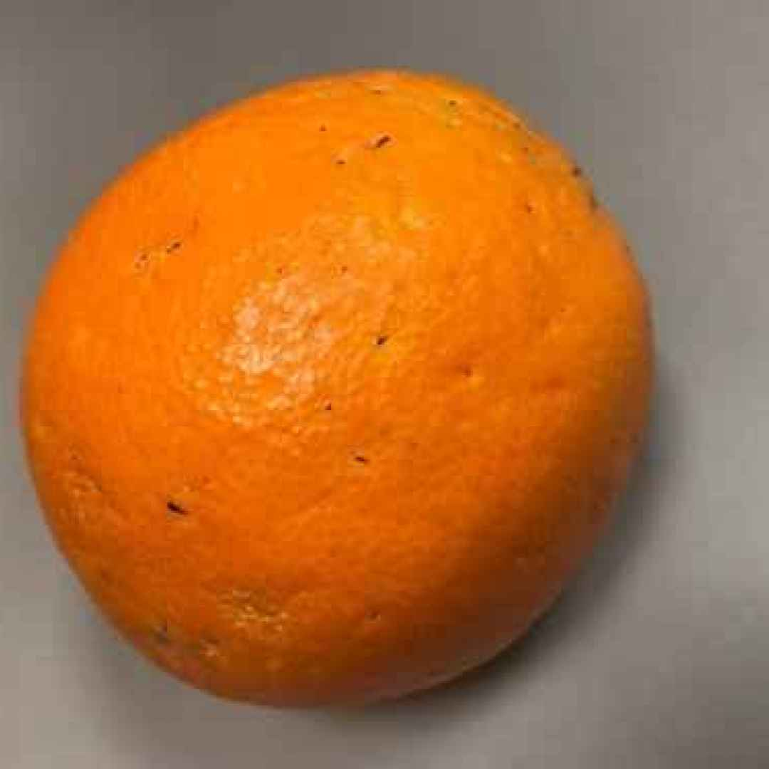 benessere  salute  vitamina c  news