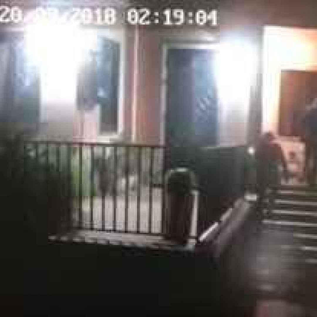 napoli video carabinieri ladri arresti