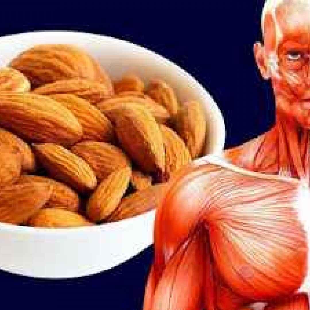 salute mangiare sano corpo bellezza