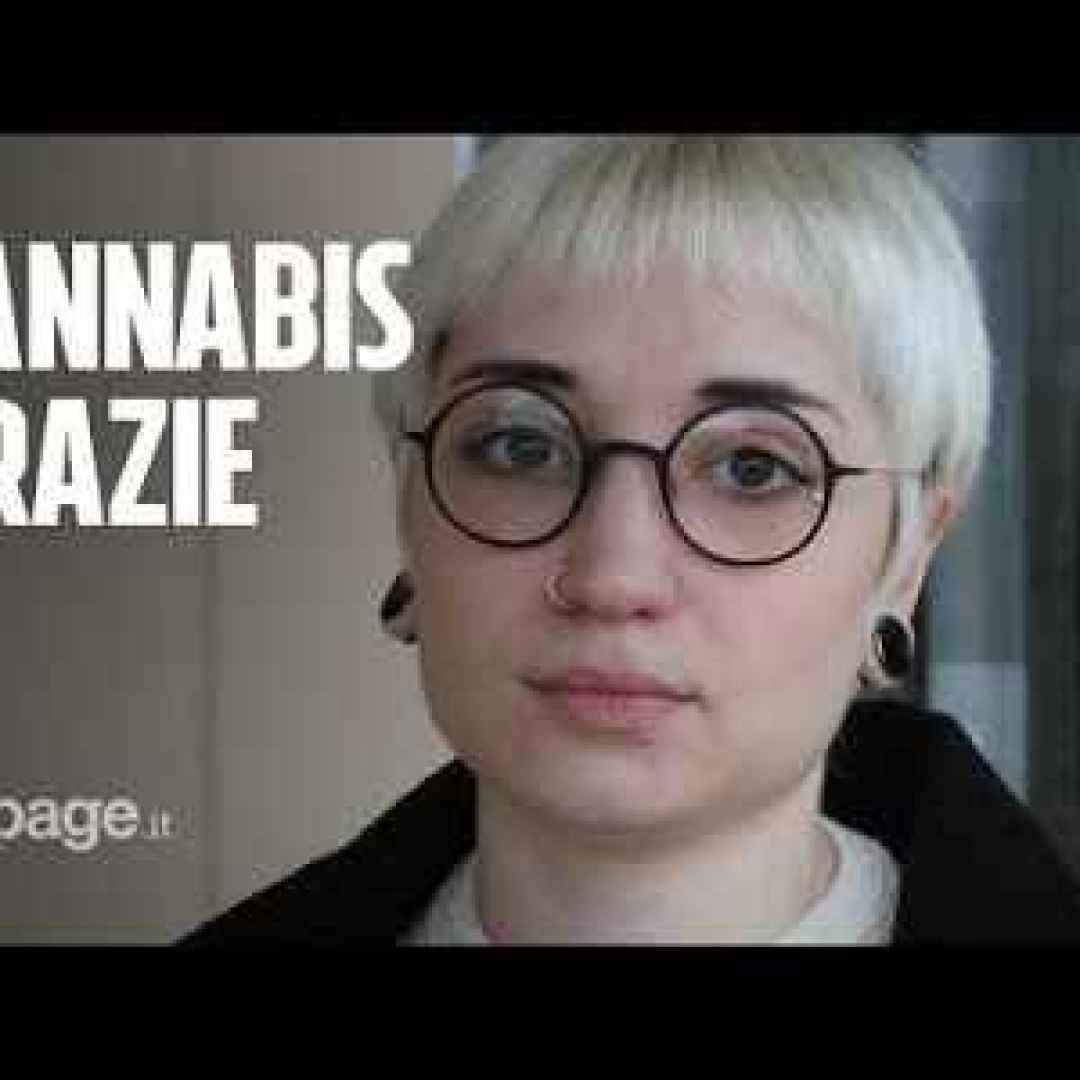 cannabis  salute  video  cannabis medica