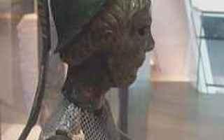 Cultura: imbolg  brigit  bucaneve  celti