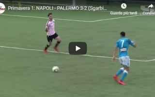 Serie minori: napoli palermo video gol calcio