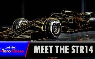 Formula 1: toro rosso  honda  f1  formula1