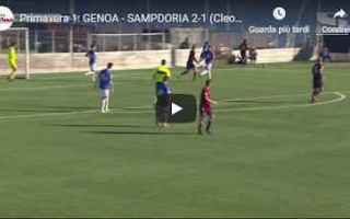 Serie minori: genoa sampdoria video gol calcio