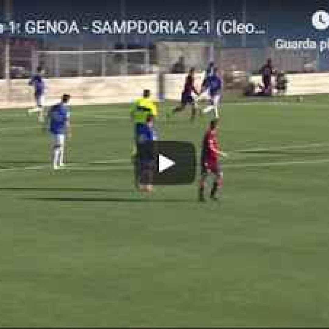 genoa sampdoria video gol calcio