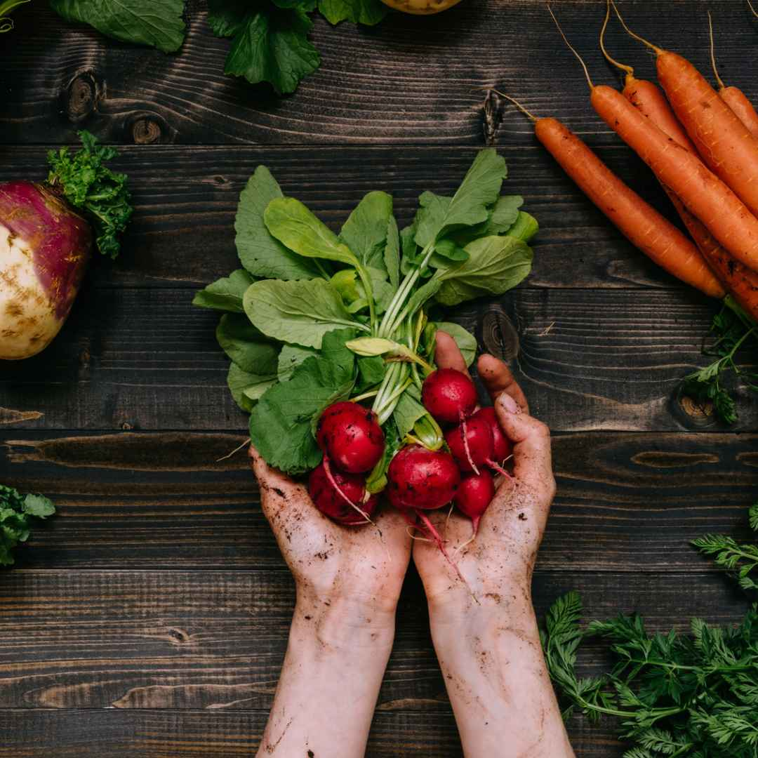 vegani  vegetariani  vitamina b12