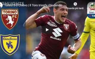 Serie A: torino chievo video gol calcio