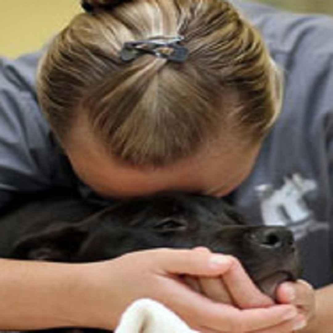 veterinari  suicidi  cani  gatti