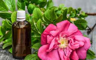 Salute: aromaterapia oli essenziali