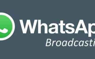 WhatsApp: whatsapp  broadcast