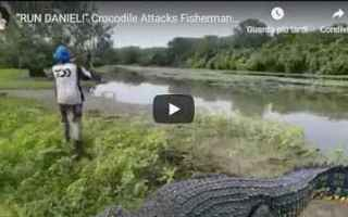 australia pesca coccodrillo fiume video