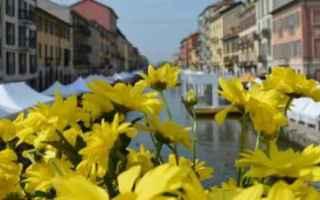 Milano: milano  naviglio  fiori  enogastronomia