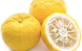 Bellezza: yuzu  limone  giappone  gelatina