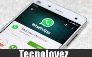 WhatsApp: whatsapp chat segrete