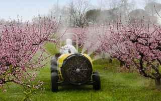 https://diggita.com/modules/auto_thumb/2019/04/25/1639277_pesticidi_colture_thumb.jpg
