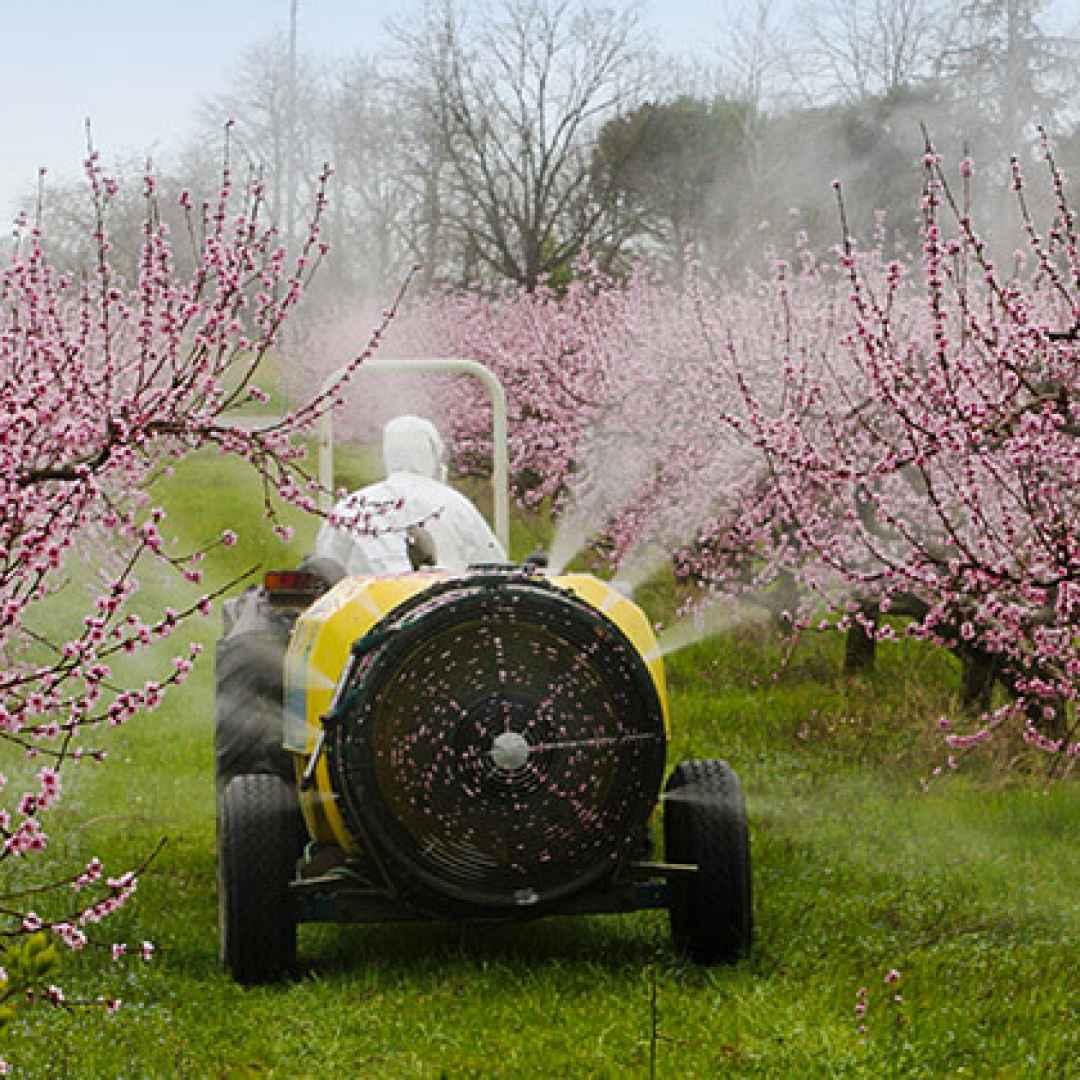 pesticidi  efsa  europa