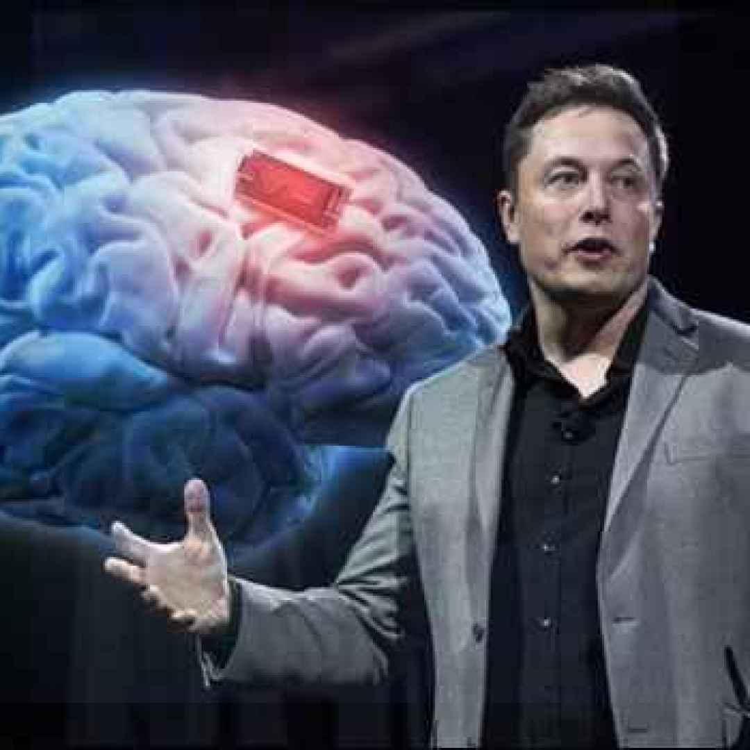 elon musk  scienza  ai  cervello