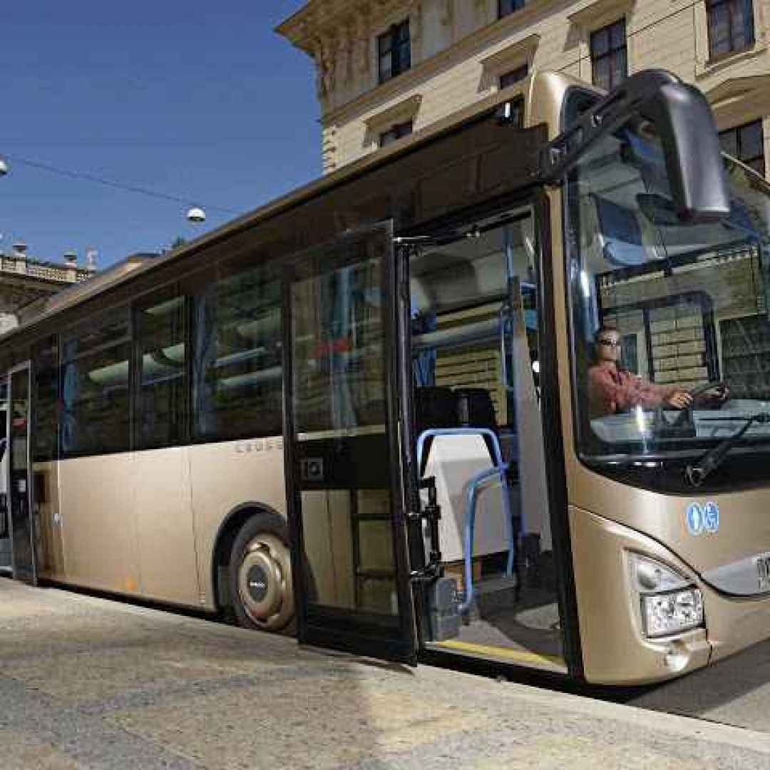 roma  trasporto pubblico  cotral