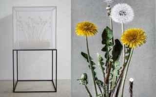 Arte: mostre  arte botanica  in-flore scientia