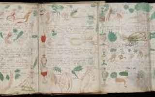 Cultura: mistero storia medioevo codice cultura