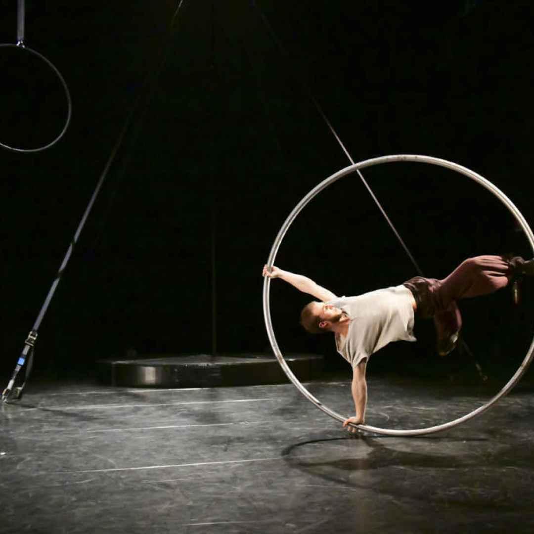 flic  torino  circo