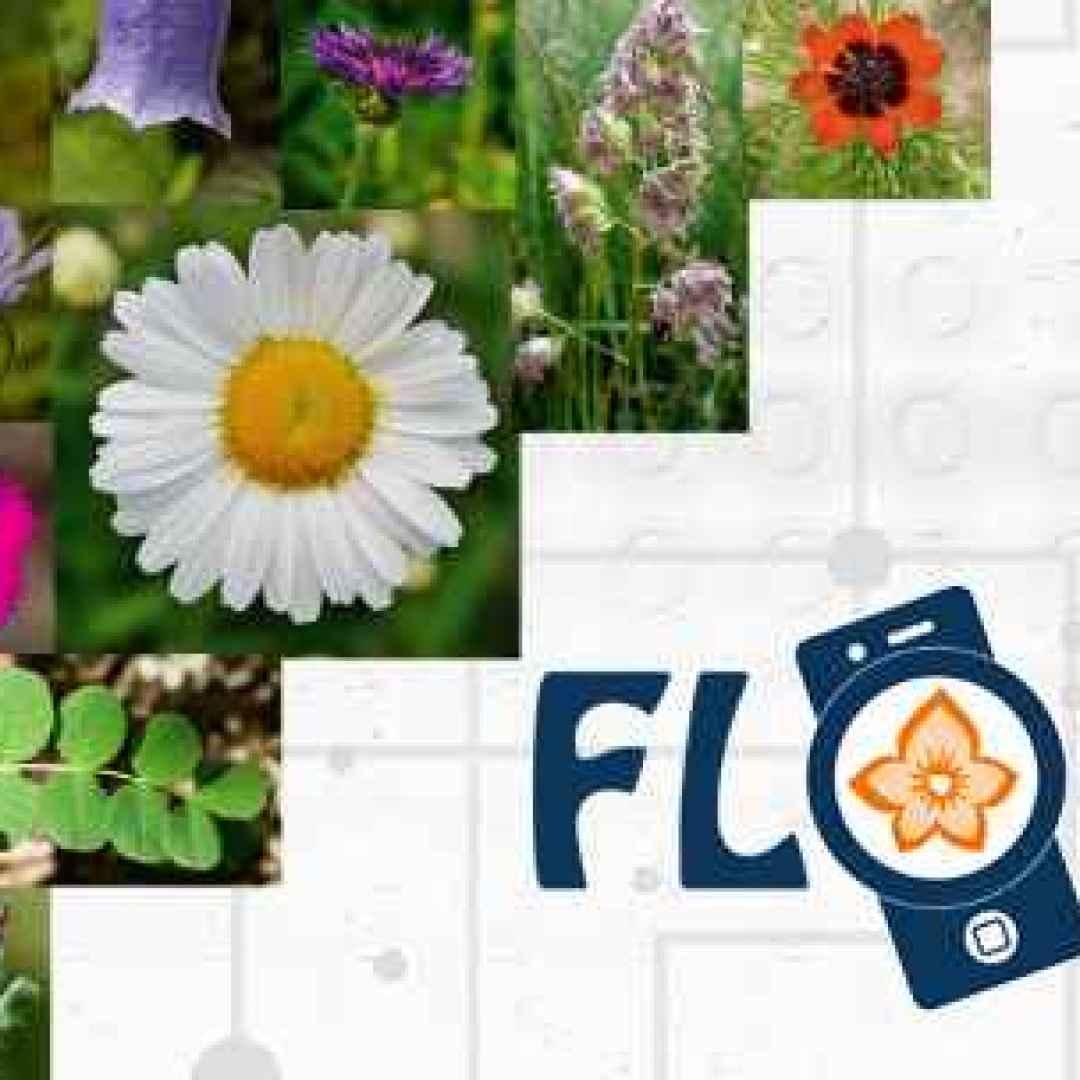 fiori piante alberi android iphone apps