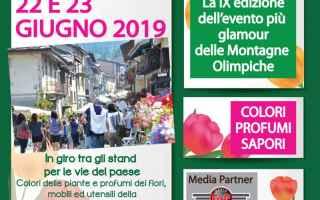 Torino: cesana  mostra-mercato  maggiociondolo
