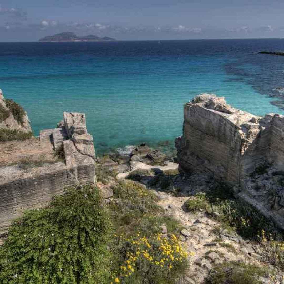 favignana  sicilia  tonno