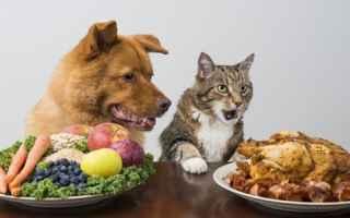 Animali: nutrigenomica  cane  gatto