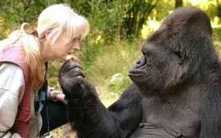 animali  scienza  psicologia