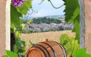 pergola  vino