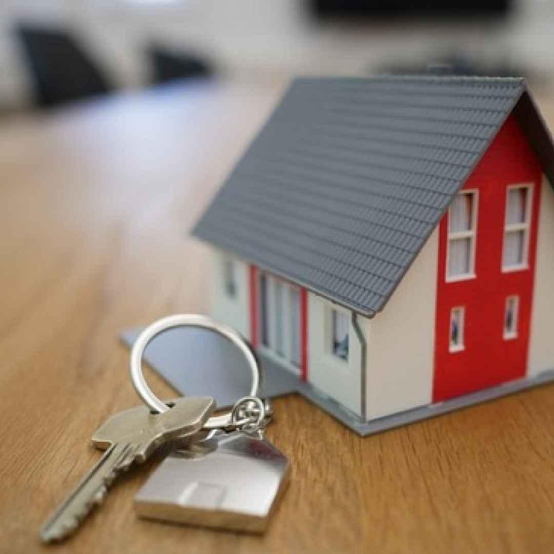 agenzie immobiliari  immobiliari