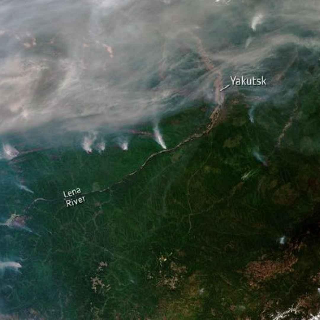 siberia  incendi  emergenza  clima  groe
