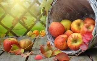 Cultura: eva  frutta  idun  mela  mitologia