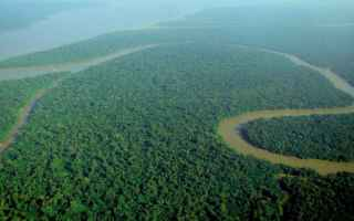Ambiente: amazzonia  inquinamento  brasile