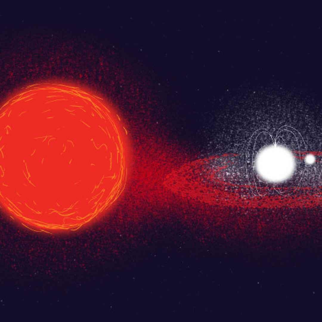 pulsar  inaf
