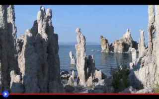 Ambiente: laghi  california  nematodi  vermi