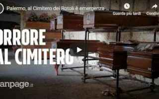 palermo video cimitero orrore shock