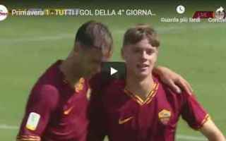 Serie minori: video gol calcio primavera italia