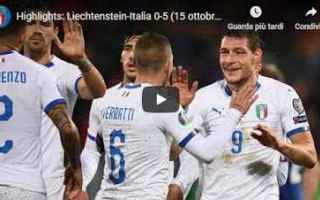 Nazionale: liechtenstein italia video calcio gol