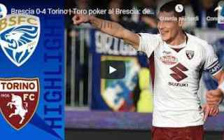 Serie A: brescia torino video gol calcio