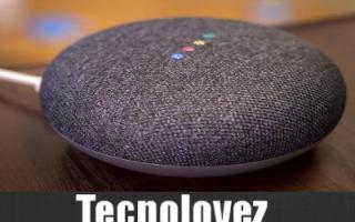 Google: google home domotica