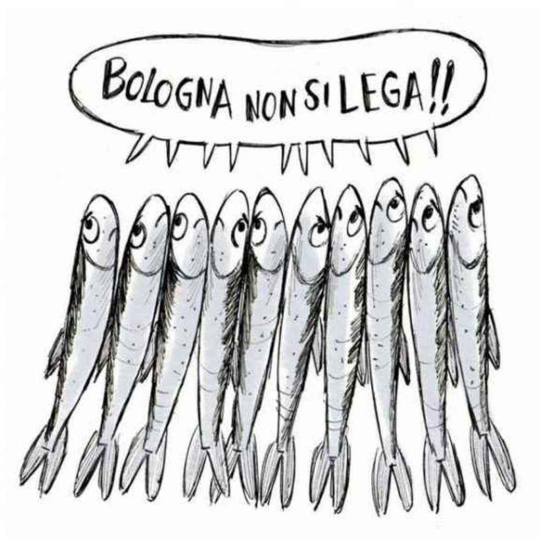 sardine  salvini elezioni emilia romagna
