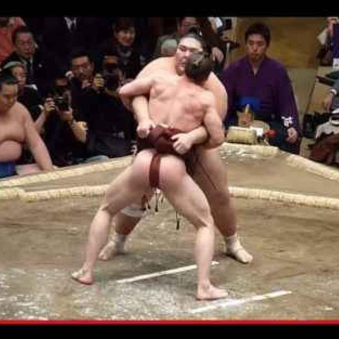 lotta  sumo  giappone  sport