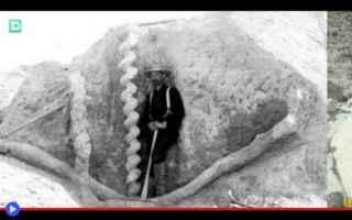https://diggita.com/modules/auto_thumb/2020/01/15/1649842_Daemonelix-fossil-500x313_thumb.jpg