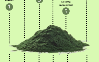 Alimentazione: spirulina  alga spirulina  erba spirulin