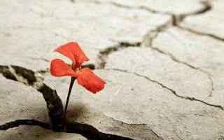 Cultura: resistenza  resilienza