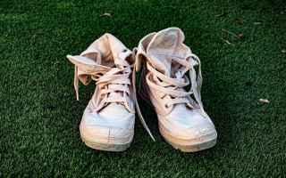 lavare  lavaggio  scarpe  lavatrice